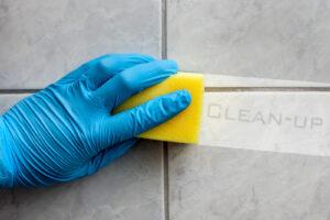 premium-domestic-clean
